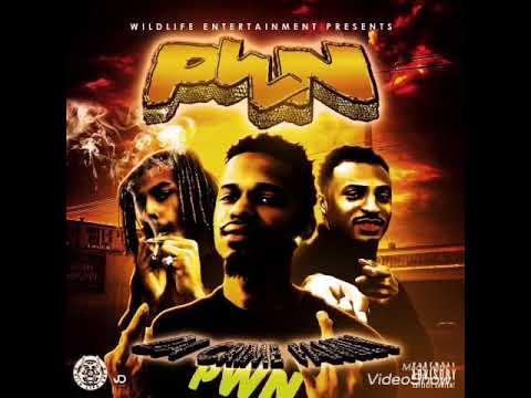 PWN - Rollin