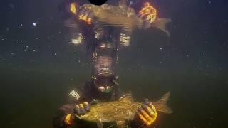 подводная охота озеро Балхаш 2017г + ночная подводная охота