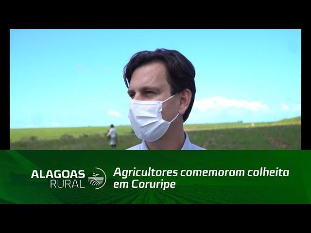 Agricultores comemoram colheita em Coruripe
