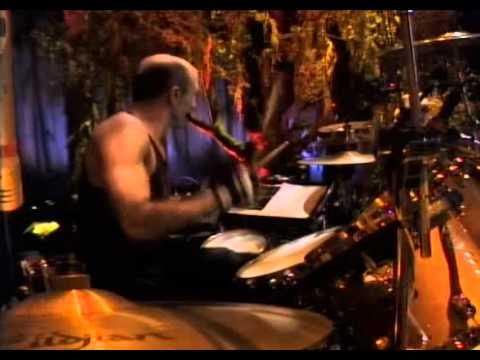 John Fogerty Premonition  Live Concert