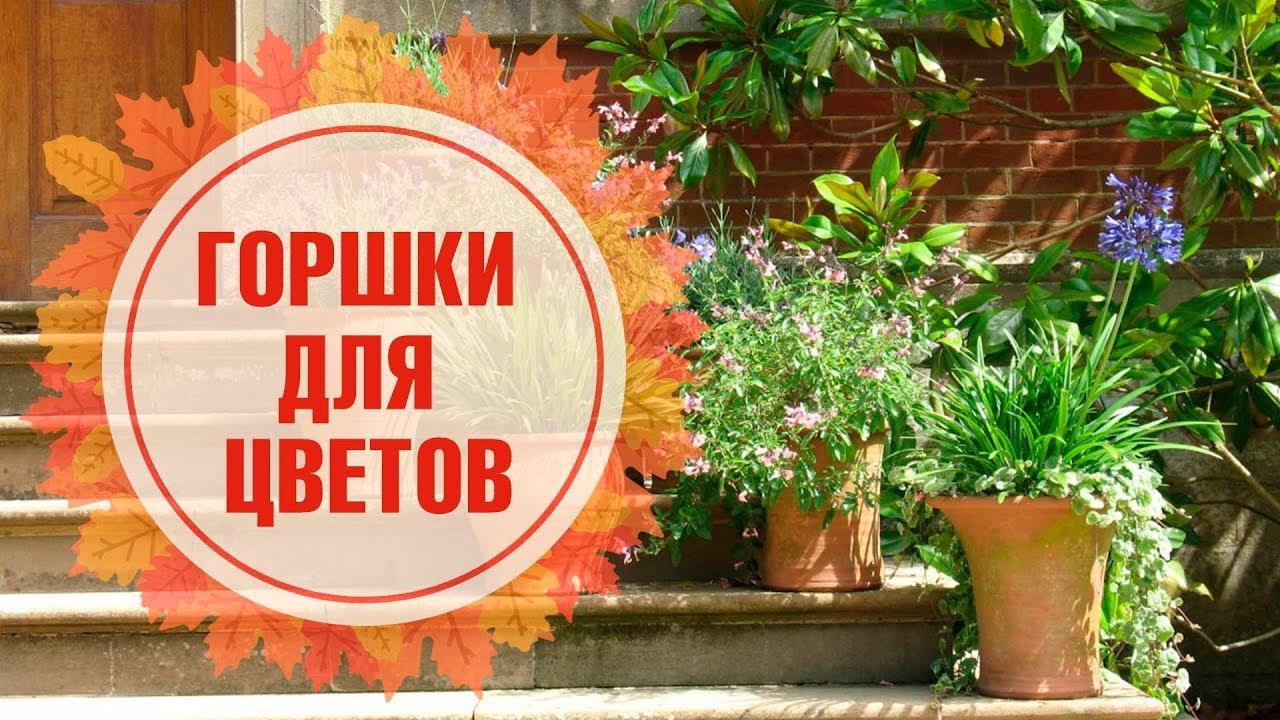 В интернет-магазине hoff вы можете купить кашпо lechuza по лучшим ценам в москве, у нас представлен большой каталог кашпо с автополивом.