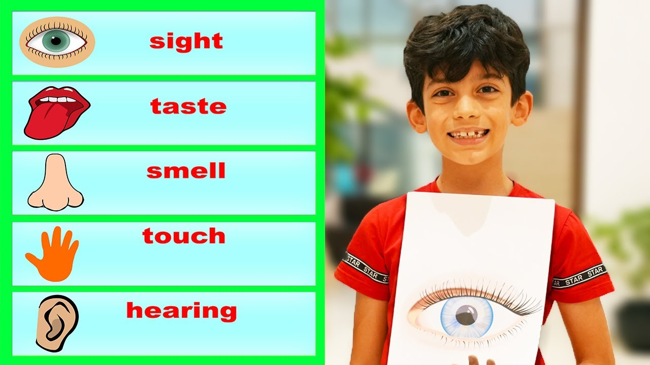 Story to Learn Five Senses for Children with Jason