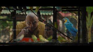 MazhavilMatineeMovie  | ' Panchavarnathatha ' Today @ 1 PM  | MazhavilManorama