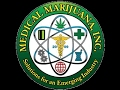 Taking A Look At MJNA Stock Medical Marijuana Company Holdings and Financials Analysis