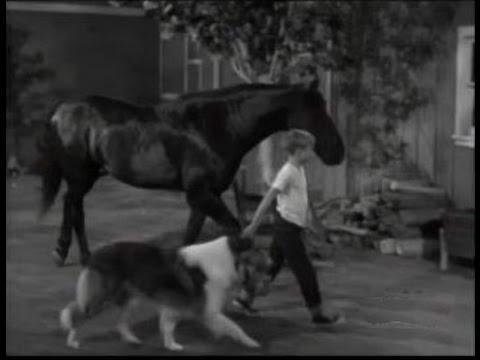 Lassie - Episode #298 -