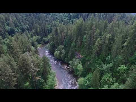 Drone- Green River- Auburn, WA