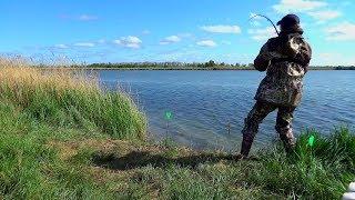 Рыбалка на фидер. Приехали ловить карася, а поймала Карпа.