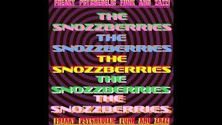 Snozzberries LIVE @ Asheville Music Hall 11-4-2017