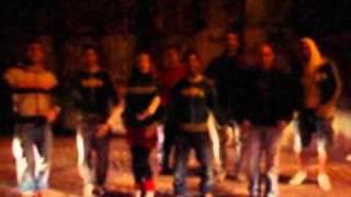 Trepa no Coqueiro Video Clip 2011