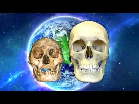 New History of Humanity - History of Mankind Revised