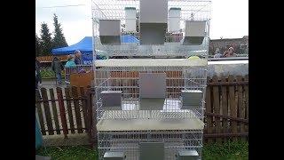 Чешские клетки для кроликов, изготовление и продажа