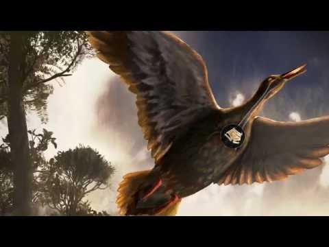 """Discovery of fossil """"voice box"""" of Antarctic bird suggests dinosaurs couldn"""