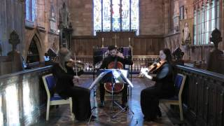 Canon In D (Johann Pachelbel) Wedding String Trio Resimi