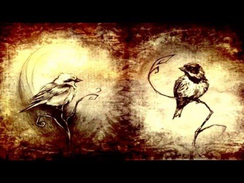 Bic Runga: Birds (Subtitulada en español)