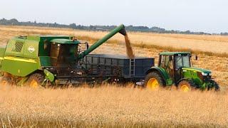 Żniwa pszenicy 2019 w GR Dzioba  Świętokrzyskie  John Deere 1450, Bizon Z056, John Deere 6150M