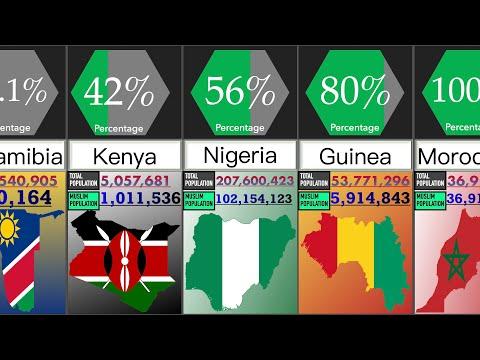 Muslim Population in African Countries   Percentage Comparison   DataRush 24
