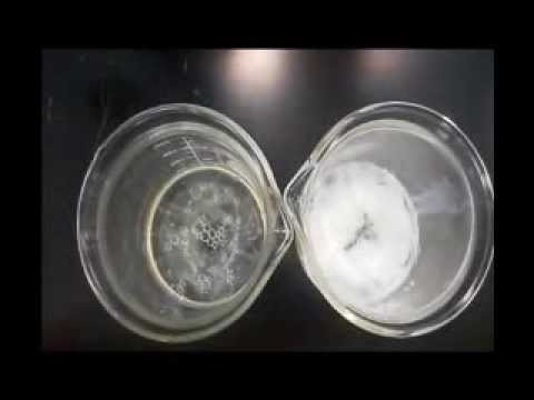 protein denaturation of egg white and milk experiment Denaturation results in a loss of protein activity  egg whites and milk, are used  as antidotes for heavy metal poisoning, because their proteins readily combine.