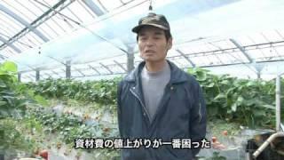 農業者インタビュー