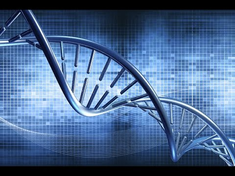 How to preserve fleeting digital information with DNA for future generations