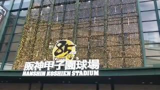 【イルミネーション】午後5時、点灯の瞬間【阪神甲子園球場】