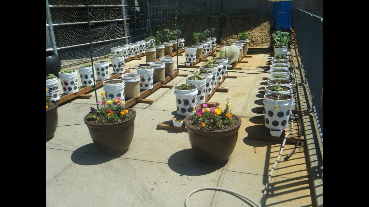 The Rain Gutter Grow System Goes To The Big Apple A High
