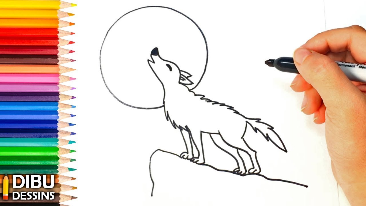 Comment dessiner un loup dessin de loup youtube - Dessin de loup simple ...