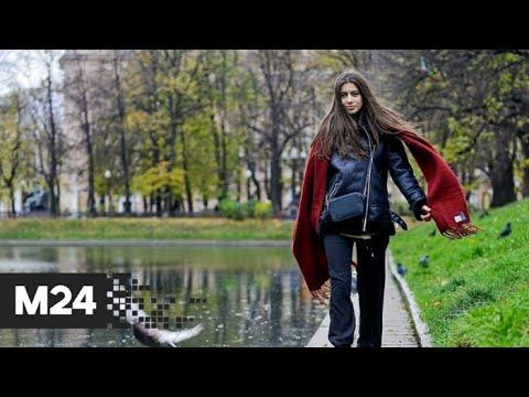 """""""Погода"""": в столицу придет резкое похолодание - Москва 24"""