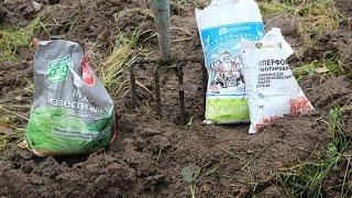 видео Как подкислить почву для томатов