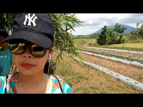 ~Ocampo,Cam.Sur Bicol Travel Vlog~ [Strawberry and Deer Farm]