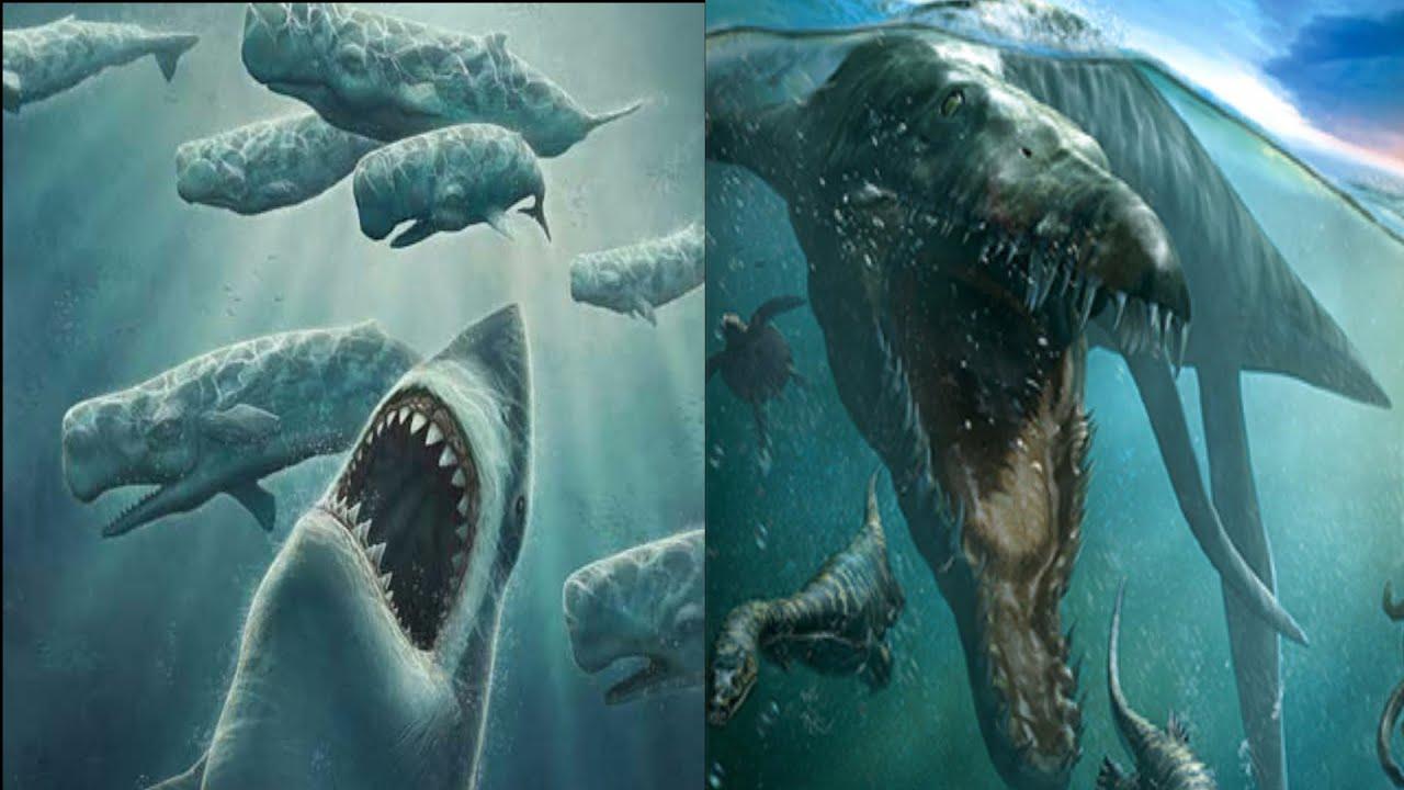megalodon shark vs predator x