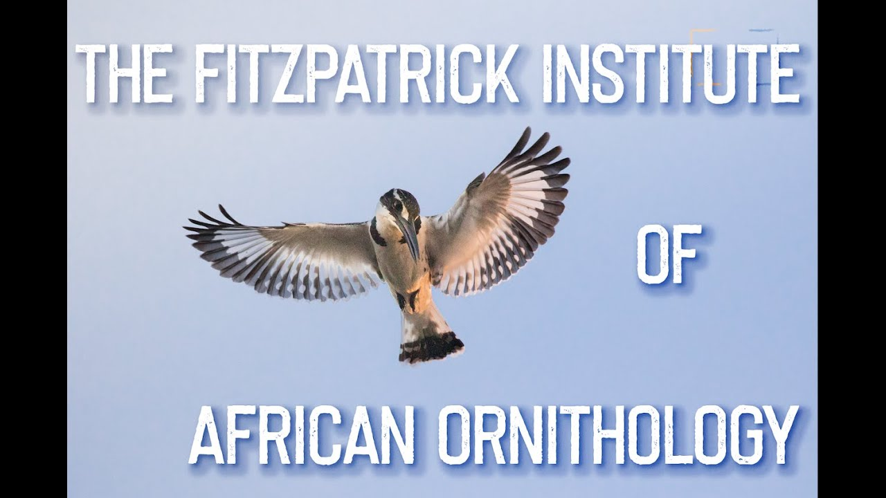 The FitzPatrick Institute of African Ornithology