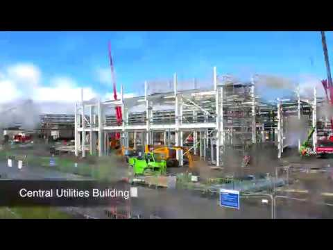 Life-Changing Opportunities: Cruiserath, Ireland | Bristol-Myers Squibb