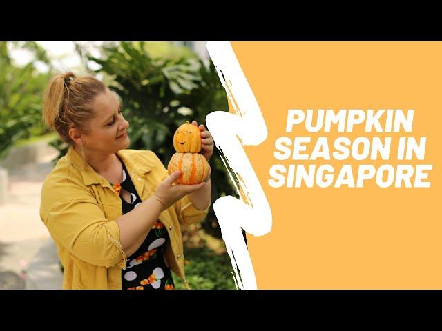 Glamadventure   PUMPKIN SEASON in SINGAPORE