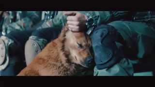 «У кожного свій фронт». Фильм полка «Азов»(, 2015-05-29T13:14:00.000Z)