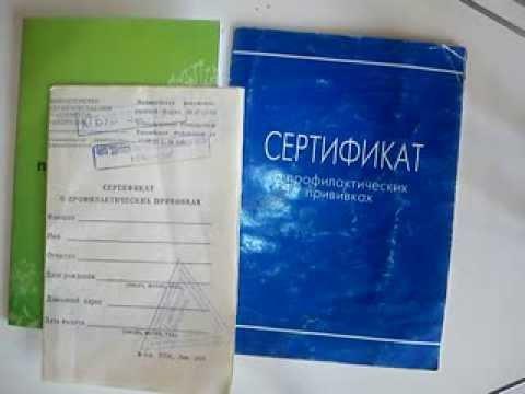 Сертификат профилактических прививок. Благотворительность вместо рекламы