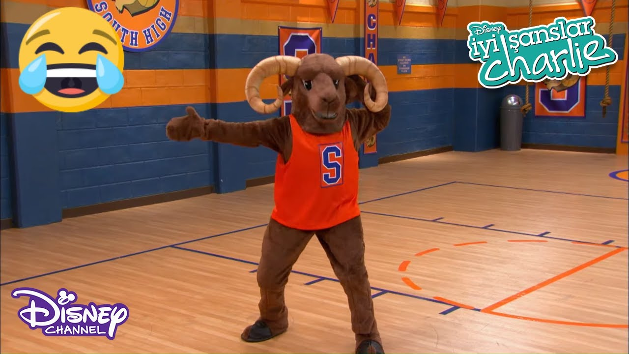 MASKOT TEDDY 🙆🏀 | İYİ ŞANSLAR CHARLIE | DISNEY CHANNEL TR