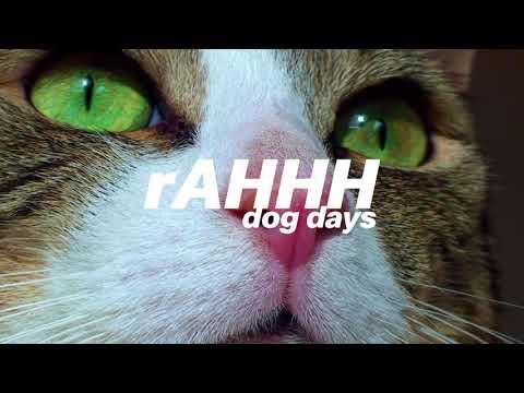 rAHHH - Dog Days