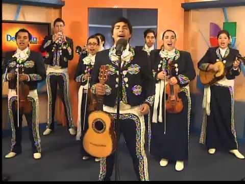 Mariachis Bogotá - Grupo Mariachis Juvenil's Show Bogotá