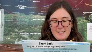 World Oceans Week Victoria Story telling: Shark Lady by Eagle Wing Tours in Victoria, BC