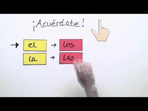 Der Plural: Übungsvideo | Spanisch | Grammatik - YouTube