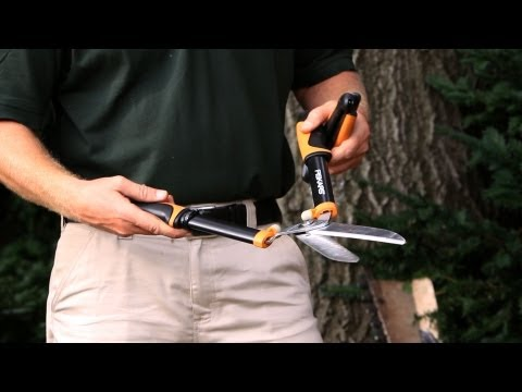 How to Trim a Hedge | Lawn & Garden Care