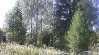 Михаил Евдокимов - На горе, на горушке