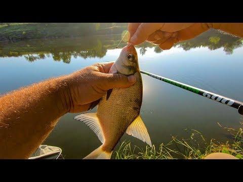 Наловил кучу леща на удочку с поплавком! Секретная прикормка для всей рыбы раскрыта!