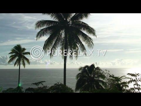 Lounge Music - Guitar Music, Harmony, Wellness & Paradise - OCEAN LOUNGE