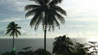 Lounge Music - Guitar Music, Harmony, Wellness & Paradise - OCEAN LOUNGE