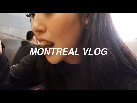 Vlog 54 • Exploring Montreal! Tommy Cafe, La Viateur Bagels, And VINTAGE STORES GALORE. (Part 1)