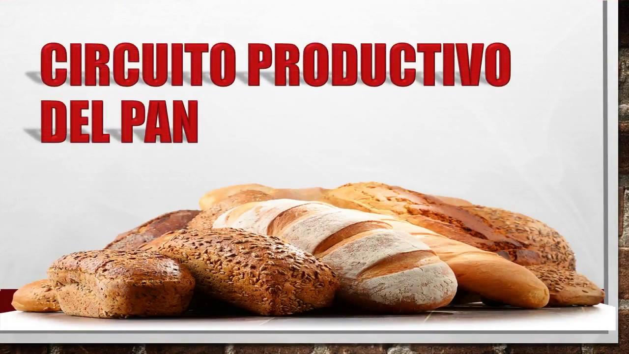 Circuito Productivo Del Trigo : Circuito productivo del trigo youtube