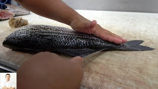 How To Fillet A Striped Bass & Kampachi Fish   Fresh And Delicious Sustainable Eating