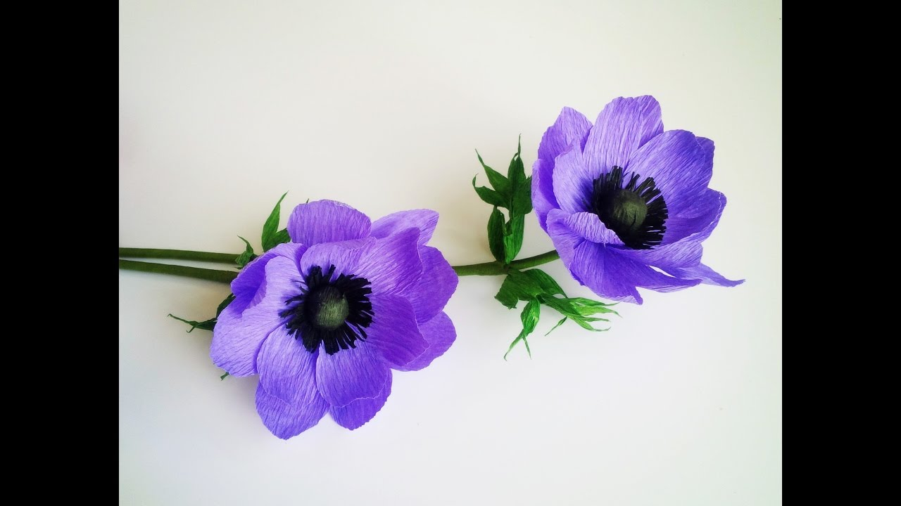 How To Make Anemone Flower From Crepe Paper Craft