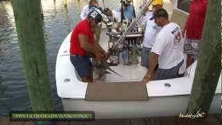 New MD State Record Shark -